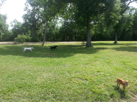 bay area park leash parks in houston tx us