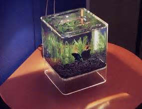 Cool Desk Setups Computer Aquariums Hacked Gadgets Diy Tech Blog