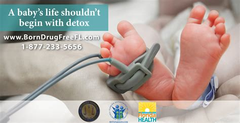 A Babys Shouldnt Start On Detox new florida initiative for newborns addicted to