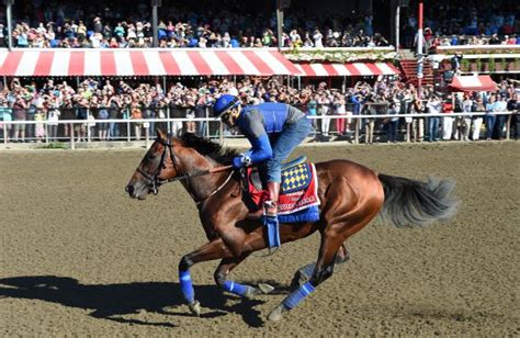 American Pharoah's Friday Gallop Attracts Huge Crowd
