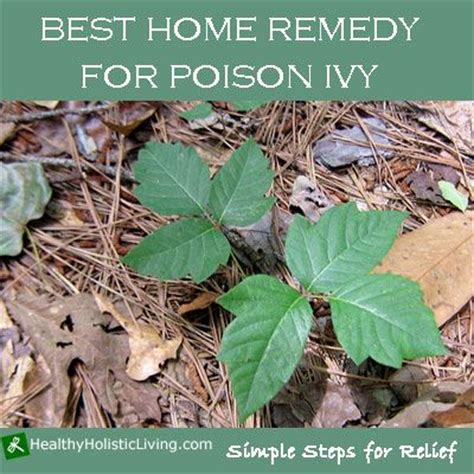 poison home remedy remedies