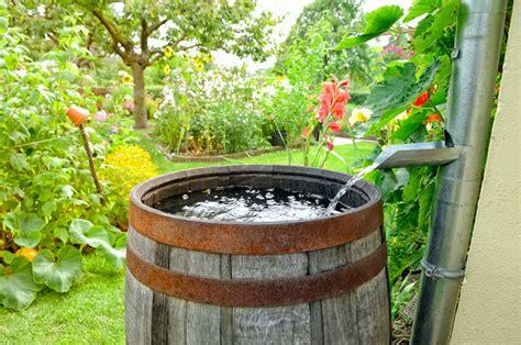 How To Garden Eco Garden How To Garden Organic