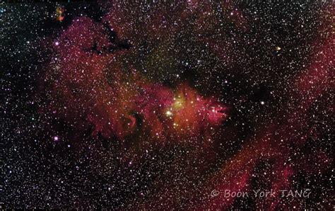 christmas tree nebula cone nebula ngc 2264 myphotojourney co uk