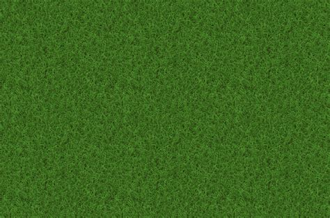 grass background pattern free free photo rush grass texture background free image