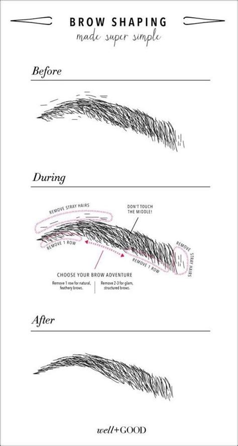 12 Tips On How To Pluck Your Eyebrows by Eyebrow Grooming Shaping Brows How To Hacks Tips