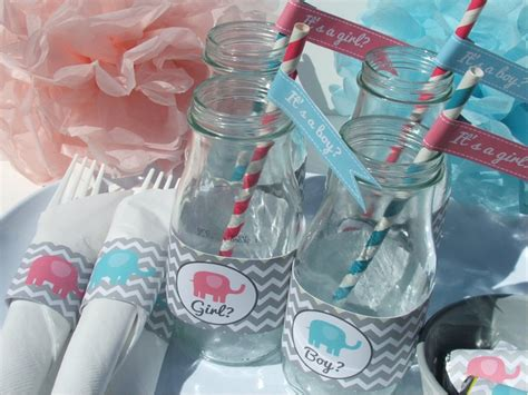 Gender Reveal Baby Shower Decorations by Gender Reveal Decorations Baby Shower Pink Blue Elephant