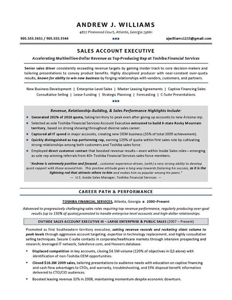 technical sales representative resume exle 1000 ideas about sales resume on sales