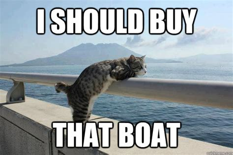 I Should Buy A Boat Meme - i should buy that boat daydreamer cat quickmeme