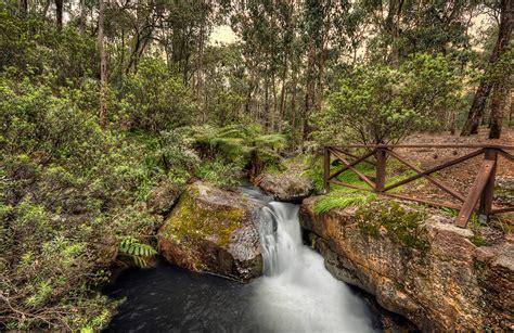 Araluen Botanical Garden Araluen Botanical Gardens Hdr Photo Hdr Creme