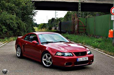 2004 mustang cobra svt 2004 ford terminator svt mustang cobra svt cobra for