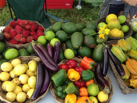 Learning Organic Gardening Retreat In Hawaii October 25th Vegetable Gardening In Hawaii