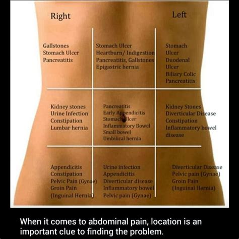 pain in left side of stomach after c section 25 best ideas about stomach pain chart on pinterest