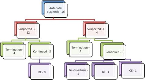 challenges and possible solutions antenatal diagnosis of bladder cloacal exstrophy