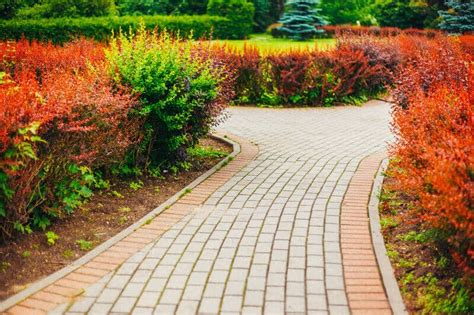 landscaping ideas backyard front yard decor designs
