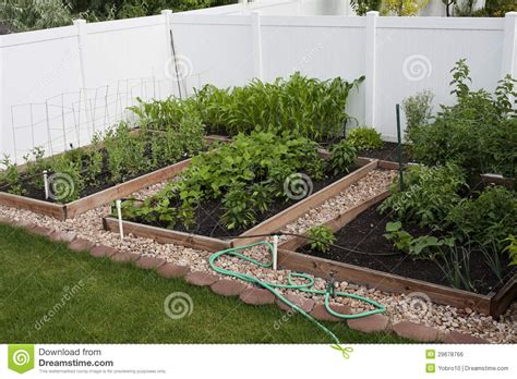 backyard organic vegetable garden royalty free stock image