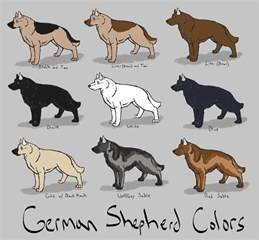 german shepherd color chart german shepherd colors ref by azulamoonwolf on deviantart