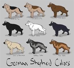 german shepard colors german shepherd colors ref by azulamoonwolf on deviantart