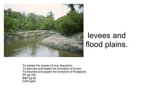 what are floodplans l4 levees and floodplains