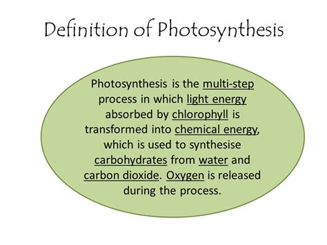 What Is The Definition Of Light Energy by Nutrition In Plants Chapter Ppt
