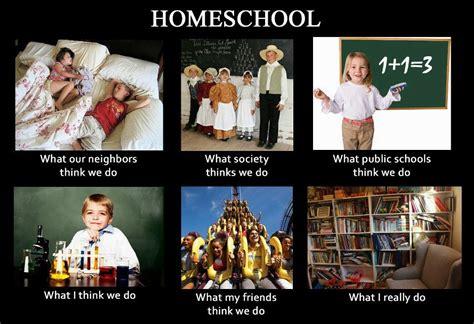 sardonic catholic pros and cons of homeschooling