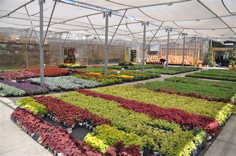 charlottes  nurseries  plant centers