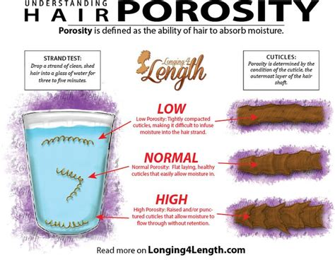 Detox Porous Hair by 25 Beautiful Hair Regimen Ideas On