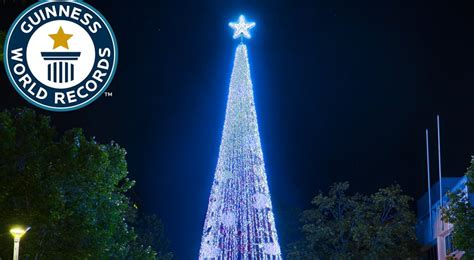 tallest xmas teee in tge workf world s largest lights display makes way into guinness world record
