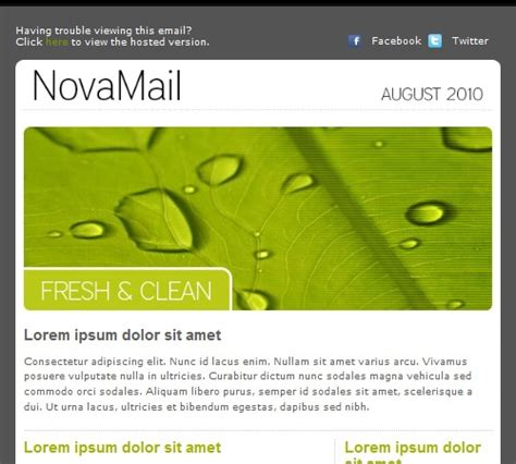 layout features to enhance communication 8 best email template ideas images on pinterest email