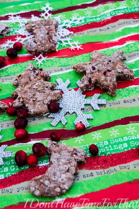 oatmeal for dogs oatmeal cranberry treat recipes