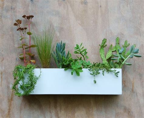 Modern White Succulent Wall Trough Planter Free By Garden Wall Troughs
