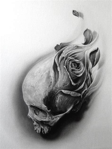 drawn rose skull inside pencil and in color drawn rose