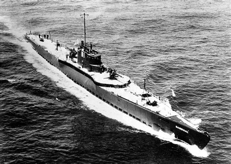 u boat in world war 1 sub early 1930 s photo of the narwahl ss 167 she was