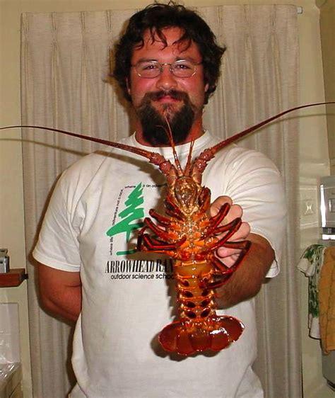 Scp 09 Crabs Pjm california spiny lobster