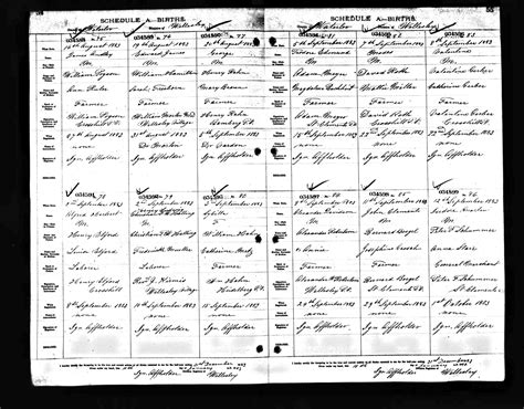 Birth Records Canada Buchheit History