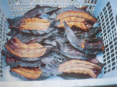 komunitas penyuluh perikanan pengolahan ikan lele asap