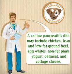 pancreatitis diet for dogs diabetic for dogs and recipes on