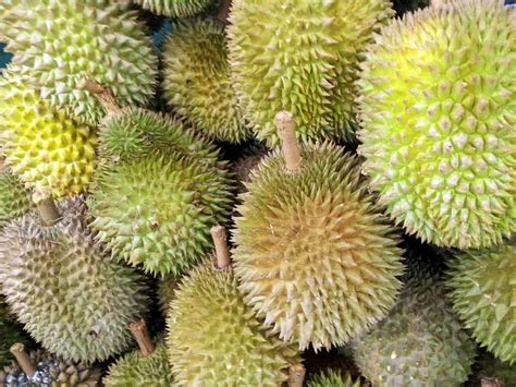 fruit you 10 rarest fruits you probably t even heard of the