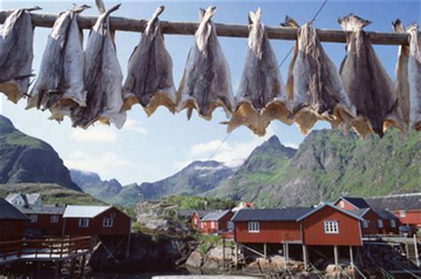 Attractive Fishing Christmas Island #4: A-lofoten-fritjoffure-IN-edit3.jpg