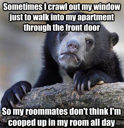 Meme Bear - confession bear meme memes