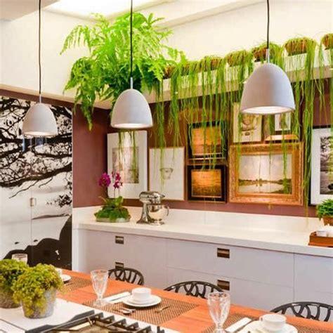 decora con plantas de interior decora con plantas decorar tu casa plantas y es facil dise