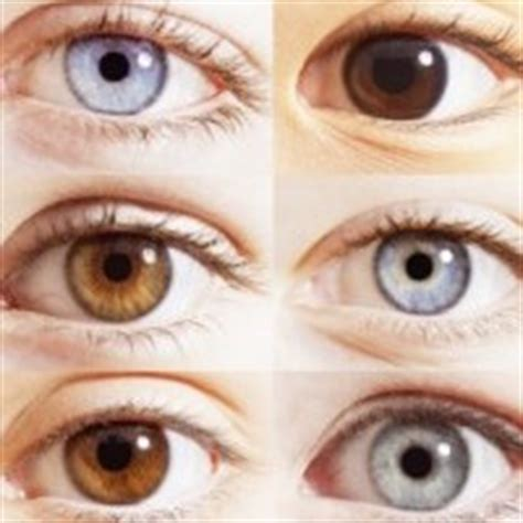 newborn eye color change newborn babies pregnancycalculator net