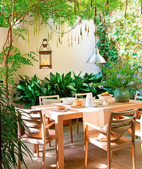 plantas para patio interior patio comedor con mesa y sillas de madera plantas
