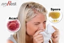 allergia acari materasso materassi ed allergie agli acari scopri come proteggerti
