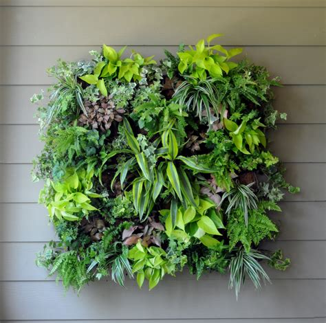 wall garden planter vertical gardens city garden ideas