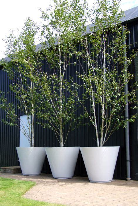 20 planters for trees contemporary concrete planters and
