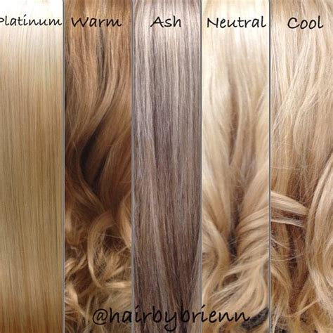 blonde different colours great color guide source modernsalon s photo on