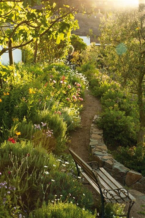 Winding Path Gardens by 8 Best Hyssop Species Images On Cacti Drought