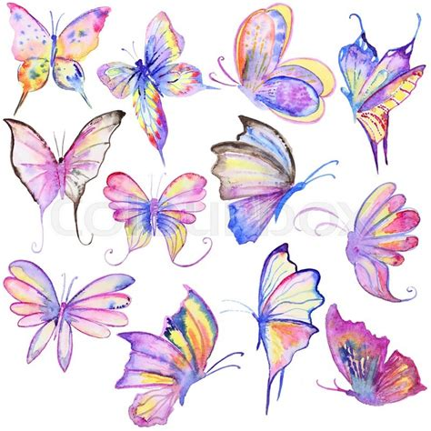 watercolor hand drawn butterflies collection hand painted