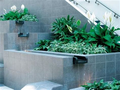 indoor landscaping interior landscaping user guide landscape ontario com