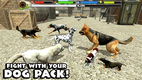stray simulator stray simulator android apps on play